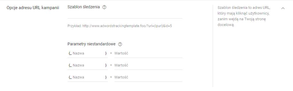 Opcje adresów URL w kampanii Adwords