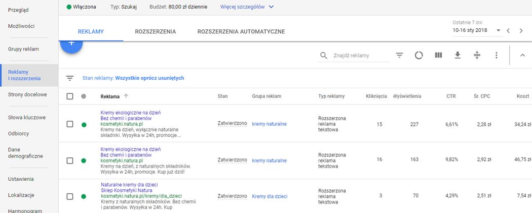 Reklamy i rozszerzenia w Google AdWords