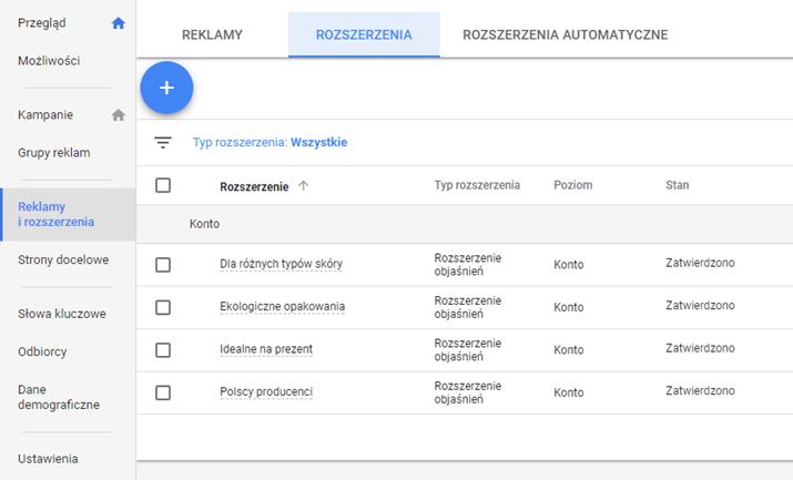 Widok na rozszerzenia Google AdWords